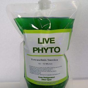 kraken marine live phyto